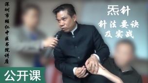 刘国轩--炁针针法要诀及实战
