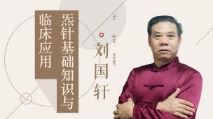 刘国轩-炁针基础知识与临床应用
