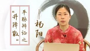 """杨阳--平脉辨证之""""升降散"""""""