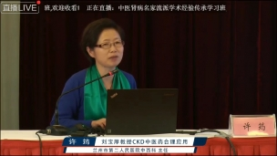 许筠--刘宝厚教授CKD中医药合理应用