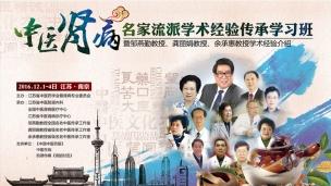 中医肾病名家流派学术经验传承学习班