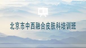 北京市中西融合皮肤科培训班