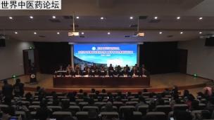世界中医药学会联合会中药饮片质量专业委员会第二届学术年会开幕式