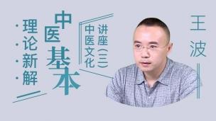 王波--王波中医文化讲座(三)中医基本理论新解