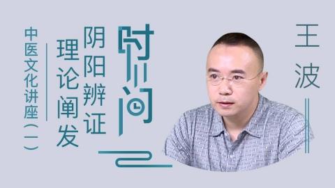 王波--王波中医文化讲座(一)时间阴阳辨证理论阐发