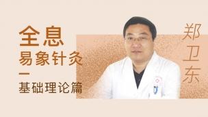 郑卫东--全息易象针灸 基础理论篇