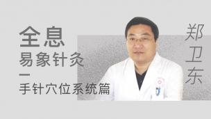 郑卫东--全息易象针灸 手针穴位系统篇