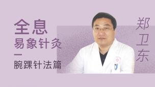郑卫东--全息易象针灸 腕踝针法篇