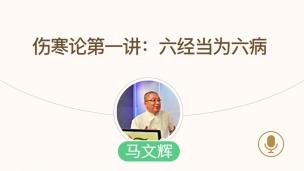 马文辉--伤寒论第一讲:六经当为六病