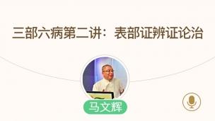 马文辉--三部六病第二讲:表部证辨证论治