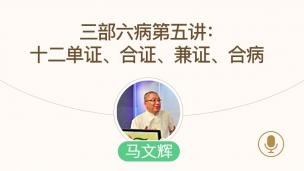 马文辉--三部六病第五讲:十二单证、合证、兼证、合病