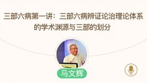 马文辉--三部六病第一讲:三部六病辨证论治理论体系的学术渊源与三部的划分