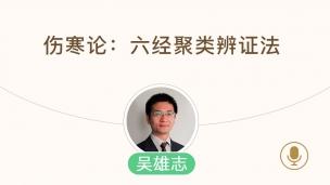 吴雄志--伤寒论:六经聚类辨证法