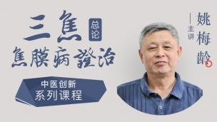 姚梅龄-三焦焦膜病证治总论