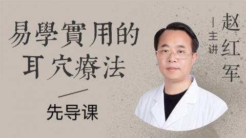 北京中医药大学特聘专家赵红军教授--易学实用的耳穴疗法先导课