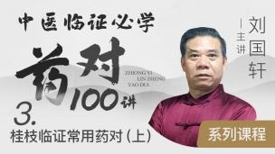 刘国轩-中医临证必学药对100讲系列课程(三)桂枝临证常用药对(上)
